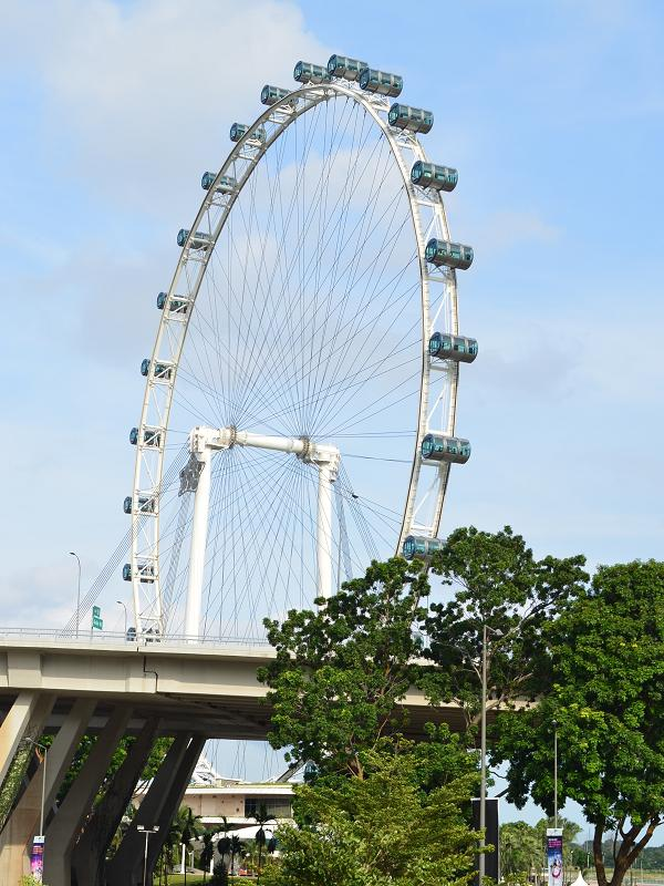 promenade singapore flyer ferries wheel